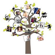 Step 1 :: Choose Family Tree Layout :: Photoart Warehouse